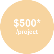 $500*/project